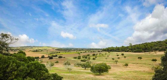 Das Landesinnere von Mallorca
