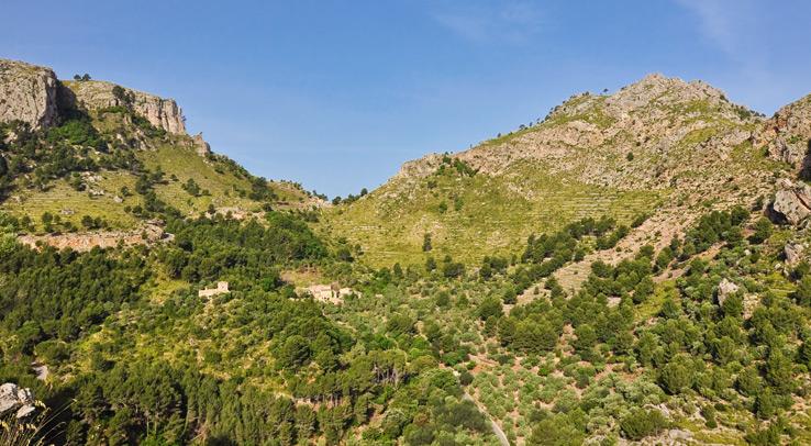 Serra de Tramuntana