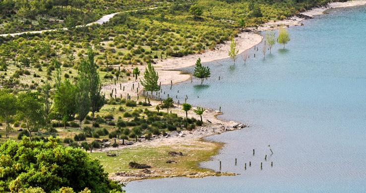 Ufer des Stausees Georg Blau