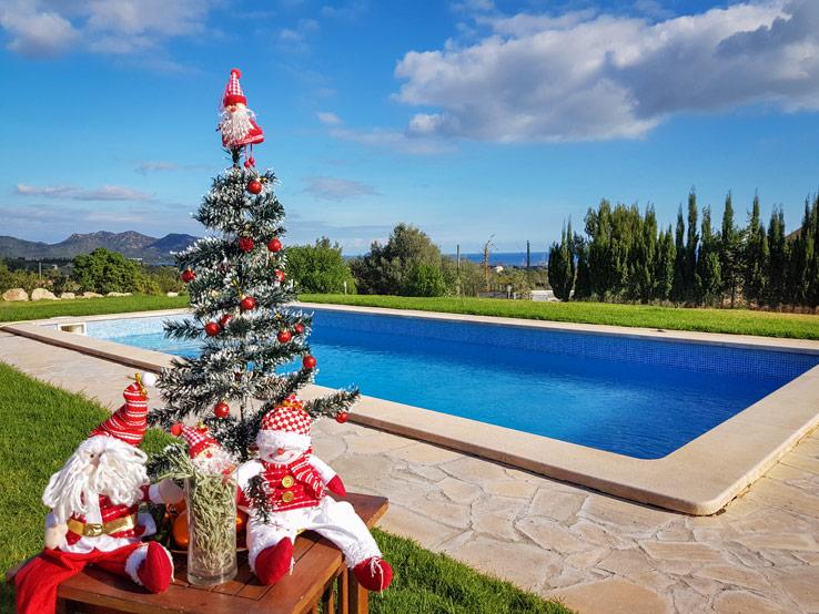 Weihnachten am Pool